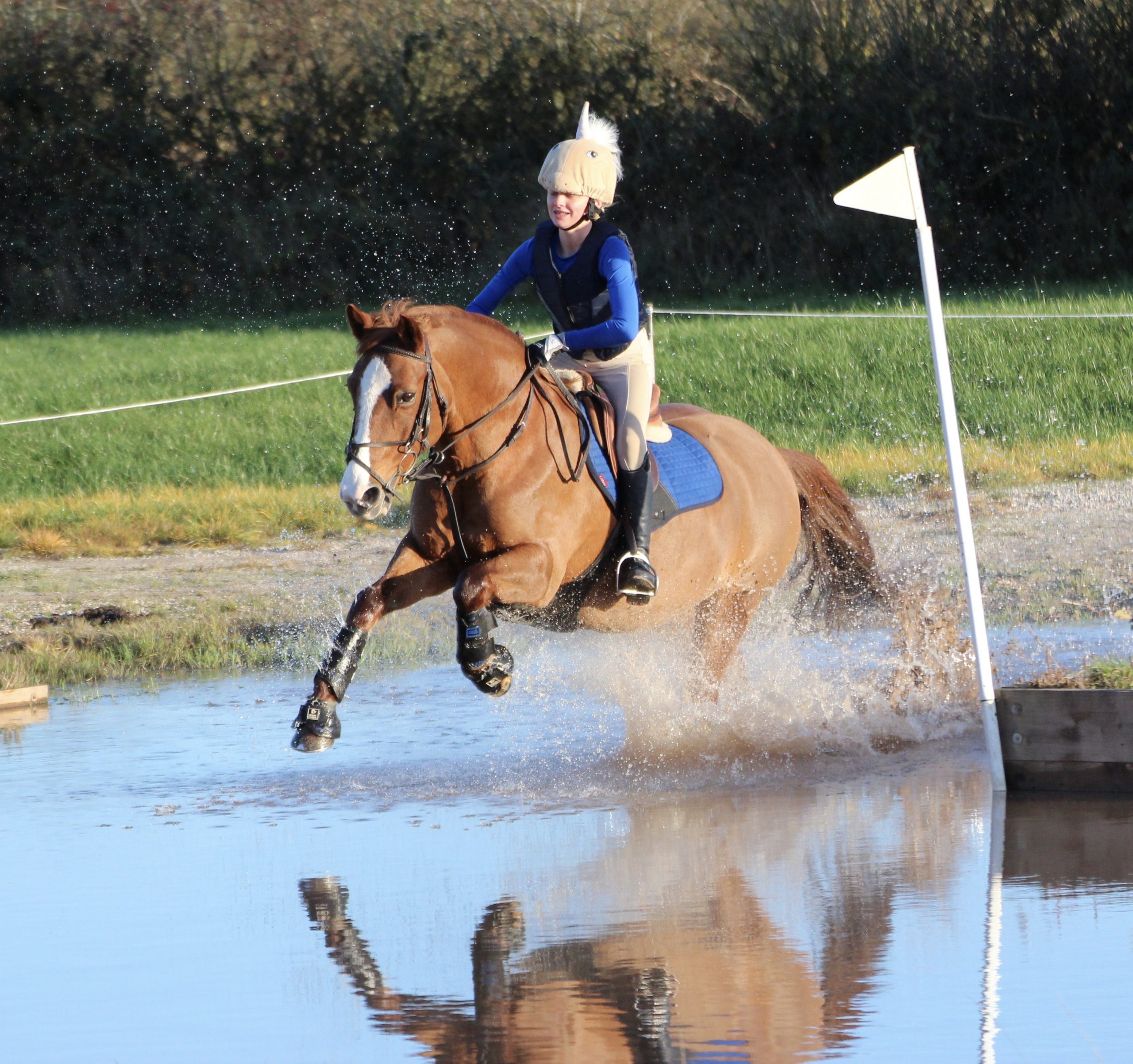 Arena Eventing 26th January 2020 Ashwood Equestrian